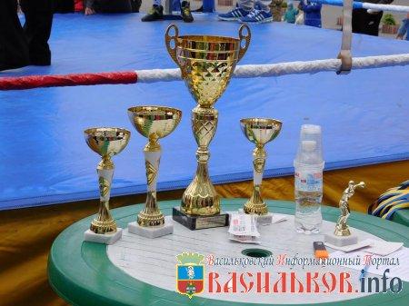 Матчева зустріч з боксу в Василькові