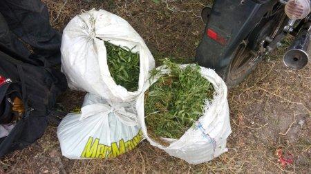 Працівники Васильківського відділу поліції затримали наркокур`єра